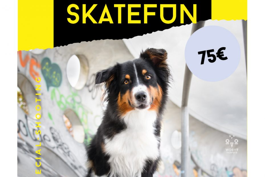 Shooting-Angebot-Skatefun