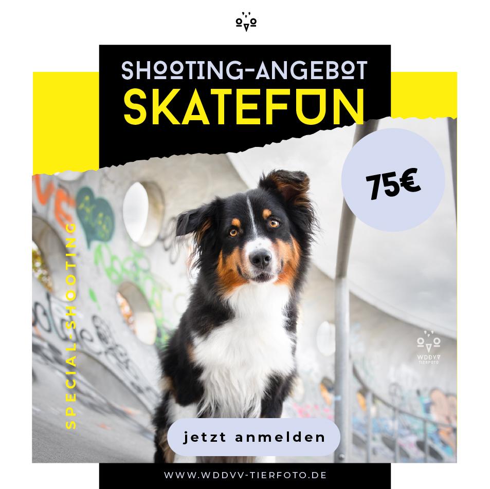 Shooting-Angebot-Skatefun